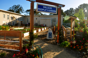 Vallejo People's Garden