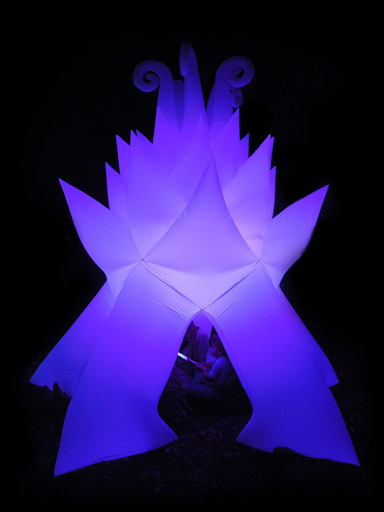 Magnolia Starship