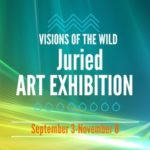 Call for Art – Visions of the Wild