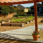 Vinnie's Community Garden
