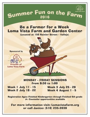 Summer Fun on the Farm 2016