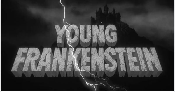 Young Frankenstein The New Mel Brooks Musical Vallejo Arts